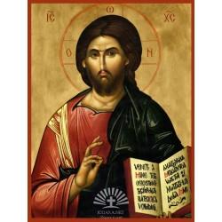 Icoana Iisus Hristos Povatuitorul