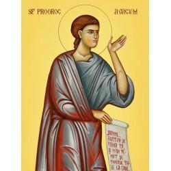 Icoana Sf Prooroc Avacum