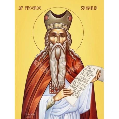 Icoana Sf Prooroc Zaharia