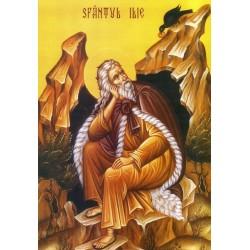 Icoana Sfantului Ilie Tesviteanul