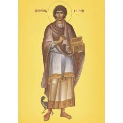 Sfantul Trifon