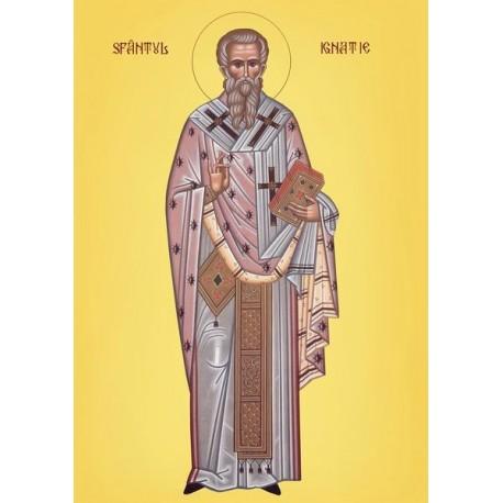 Sfantul Ignatie
