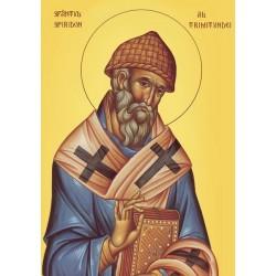 Icoana Sfantului Spiridon al Trimitundei