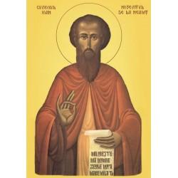 Sfantul Ioan Hozevitul de la Neamt