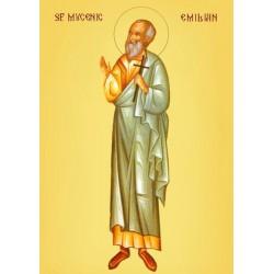 Sfantul Emilian de la Durostorum
