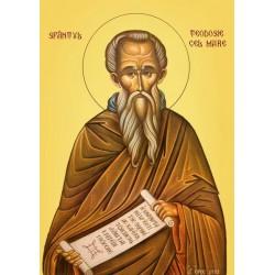 Sfantul Teodosie cel Mare
