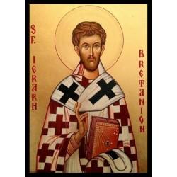 Sfantul Bretanion, Episcopul Tomisului