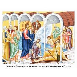 Icoana din Duminica Vindecarii Slabanogului de la Scaldatoarea Vitezda